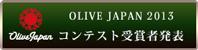 winner_banner_2013J